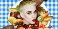 Bon Appetit – Katy Perry